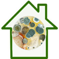 icons-mold-lg